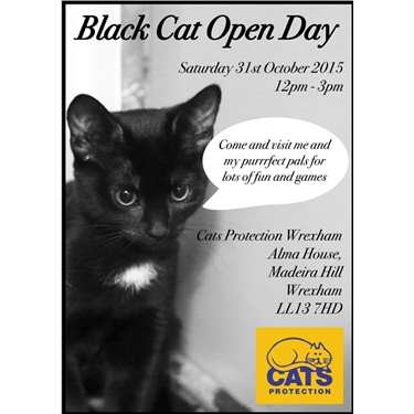 black cat open day. Black Bedroom Furniture Sets. Home Design Ideas