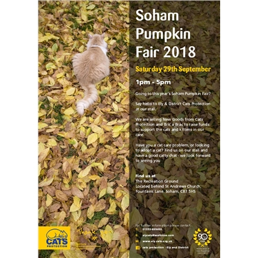 Soham Pumpkin Fair 2018