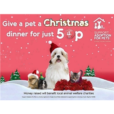 Pets at Home Christmas Appeal