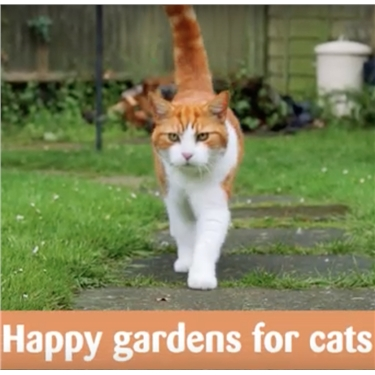 Happy Gardens for Cats