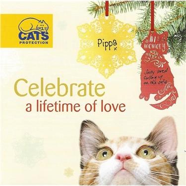 Celebrate a lifetime of love