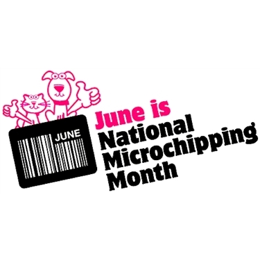 June is National Microchipping month!
