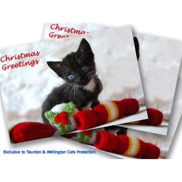 Wilfreds Christmas card