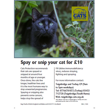 Autumn Neutering Campaign