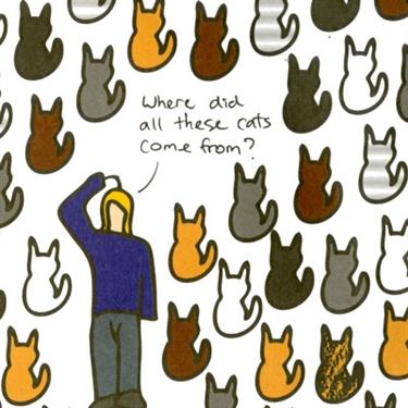 Stop your cat breeding