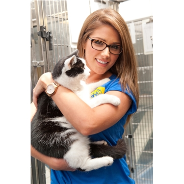 Celebrities reunite to select Britain's top cat