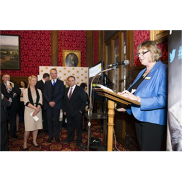 Parliamentary launch of UK