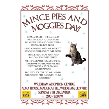 OPEN DAY (Sunday 7th Dec) - Mince Pies & Moggies Day