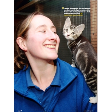 Would you like to foster for Cats Protection?