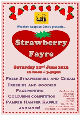 cats protection news summer event strawberry fayre. Black Bedroom Furniture Sets. Home Design Ideas