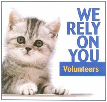 Cat care volunteers needed