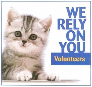 Cat care volunteers needed