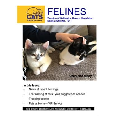 Felines Newsletter Spring 2018