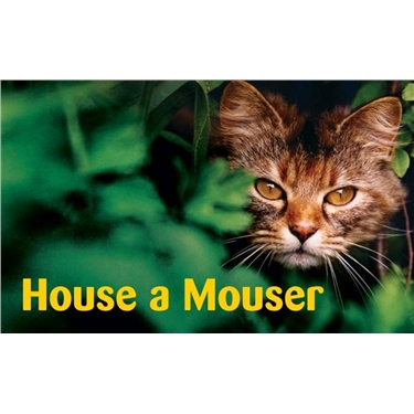House a Mouser!
