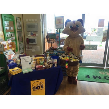 Pets at Home March Fundraiser