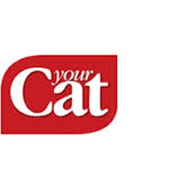 Your Cat - 1 June 2016 - Fabulous Fluffy