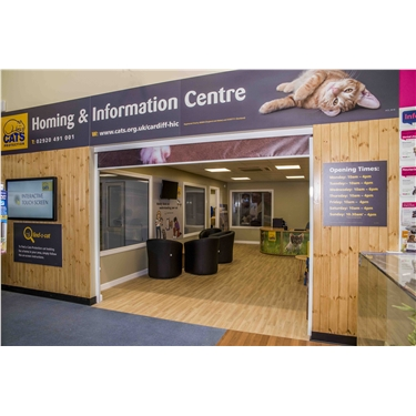 Suzy Davies AM to open new cat centre in Cardiff