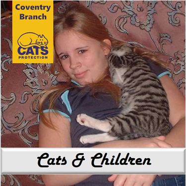 Cat Care: Cats and Children