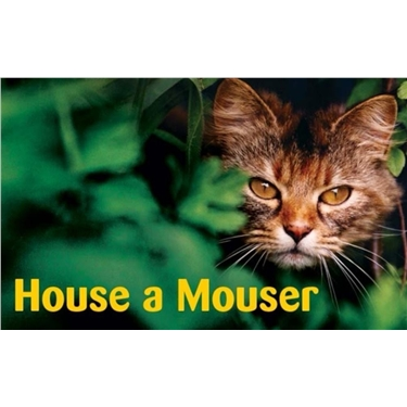 House a Mouser