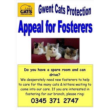 Appeal for fosterers