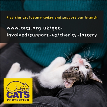 Join the cat lottery and support our branch