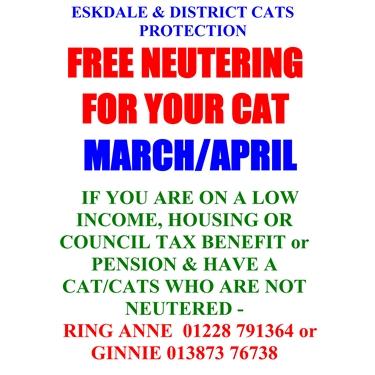 Free Neutering