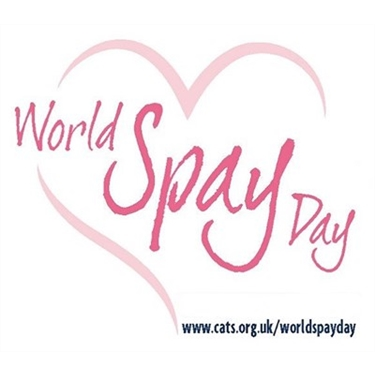 World Spay Day 23 Feb