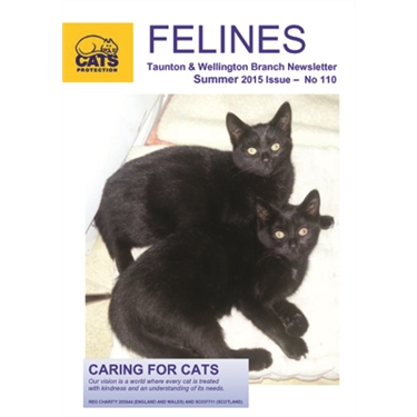 Felines Summer 2015
