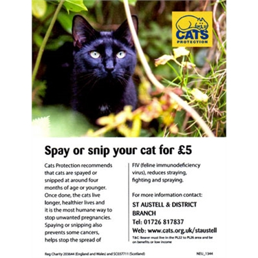 Our £5 neutering campaign is back