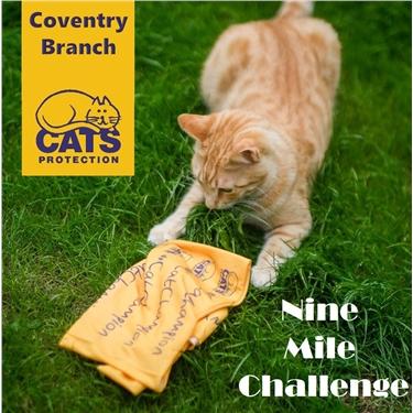 Nine Mile Challenge