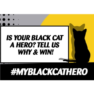 Is your black cat a hero?