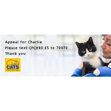 Urgent Veterinary Appeal