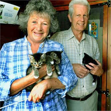 Award-winning Cats Protection volunteer has dedicated 15 years to cat welfare