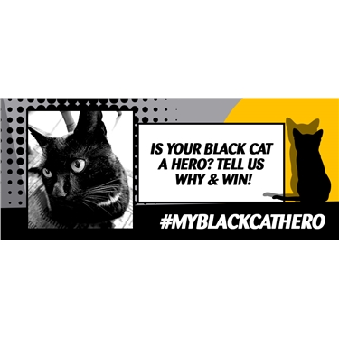 National Black Cat Day 27 Oct