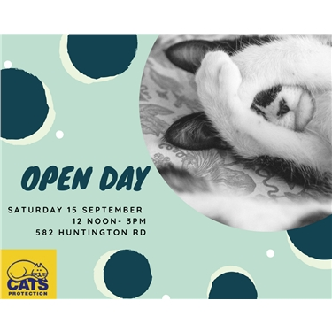 Saturday 15th September Open Day!