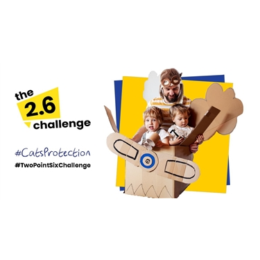 Take up the 2.6 Challenge!