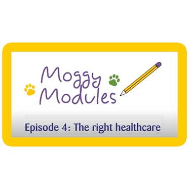 Moggy Modules for children - Episode 4