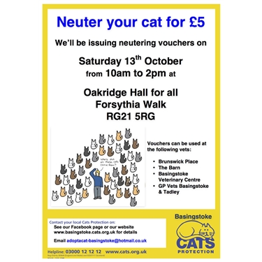 Neuter your cat for £5 - vouchers available on Saturday 13th October