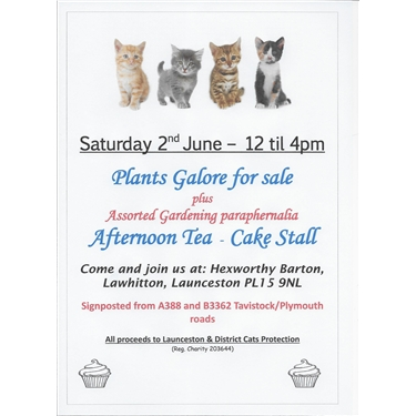 Plant Sale, Afternoon Tea and Cake Stall