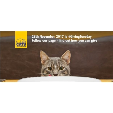Just Giving Tuesday