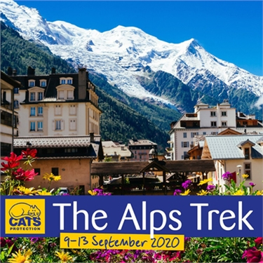 The Alps Trek Challenge 2020