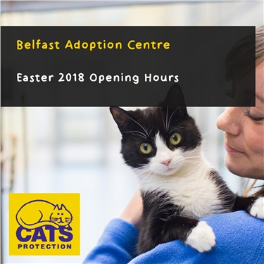 Belfast Adoption Centre Easter 2018 Opening Hours