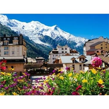 The Alps Trek Challenge 2022
