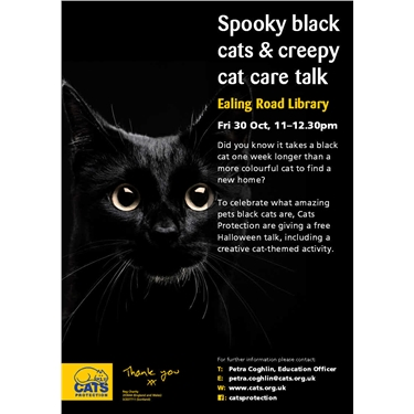 Spooky Black Cats and Creepy Cat Care Talk