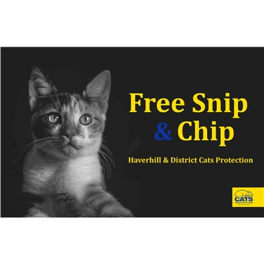 Free Snip and Chip