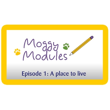 Moggy Modules for children - Episode 1