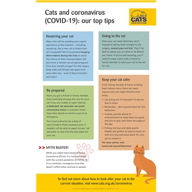Cats and coronavirus (COVID-19) - information from Cats Protection