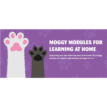 Moggy Modules for Kids