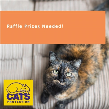 Raffle prizes - Wanted!