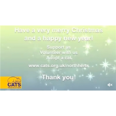 North Herts Cats Protection Christmas Message 2017